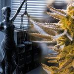 Pennsylvania Governor Supports Legalization Of Recreational Marijuana