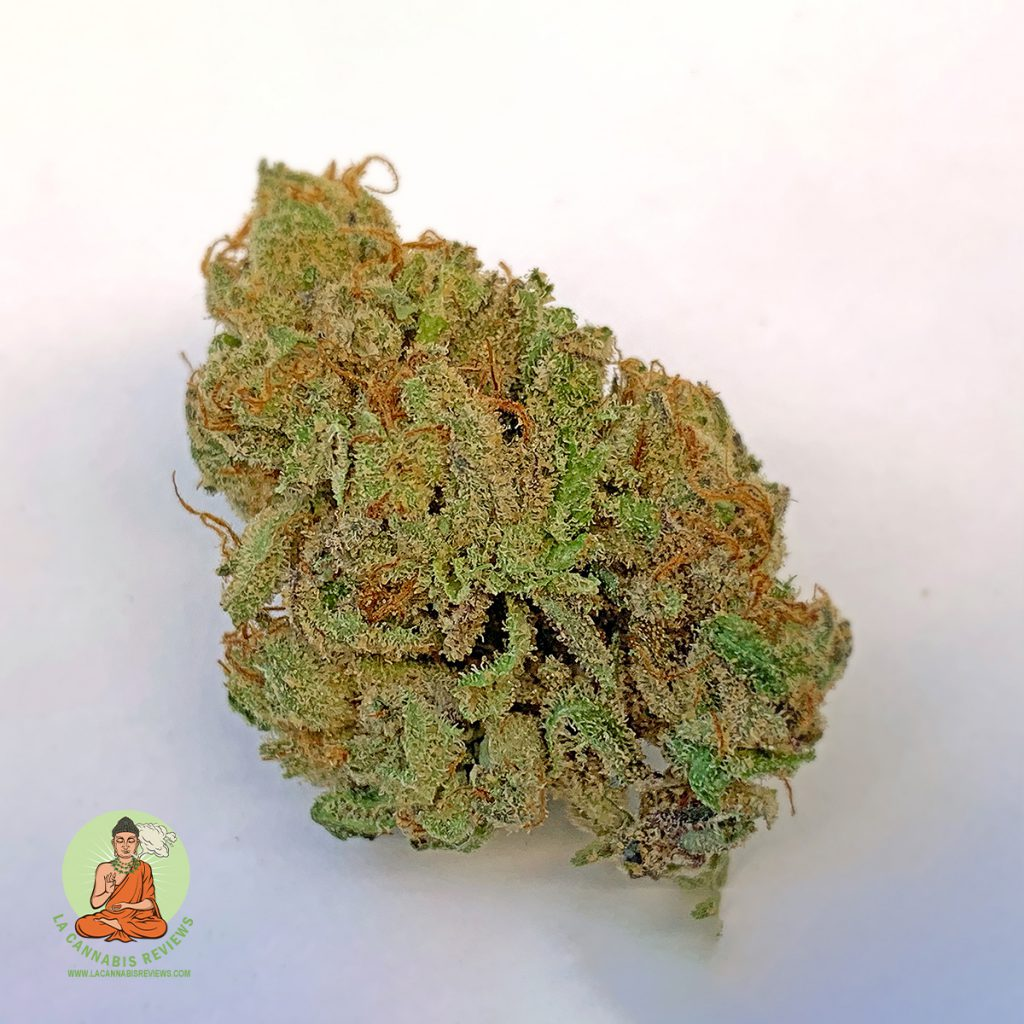 Hollywood High Grade: Grape Pie (Indica) - Flawless Pharms