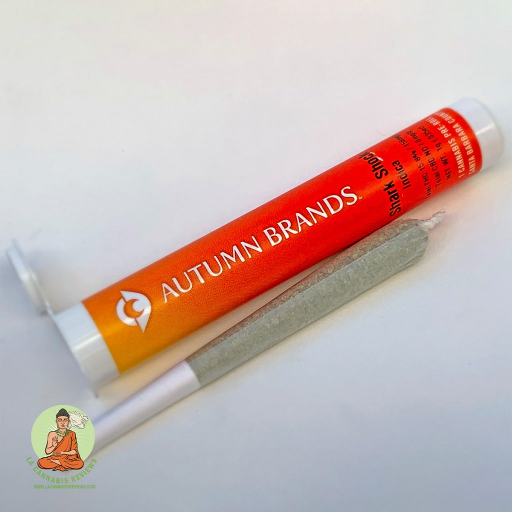 MMD Hollywood: Shark Shock Pre-Rolled Joint (Indica) - Autumn Brands