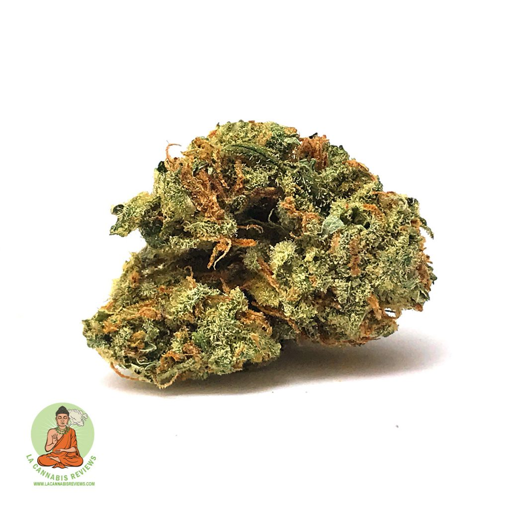 Blackjack (Sativa) California-Caregivers-Alliance