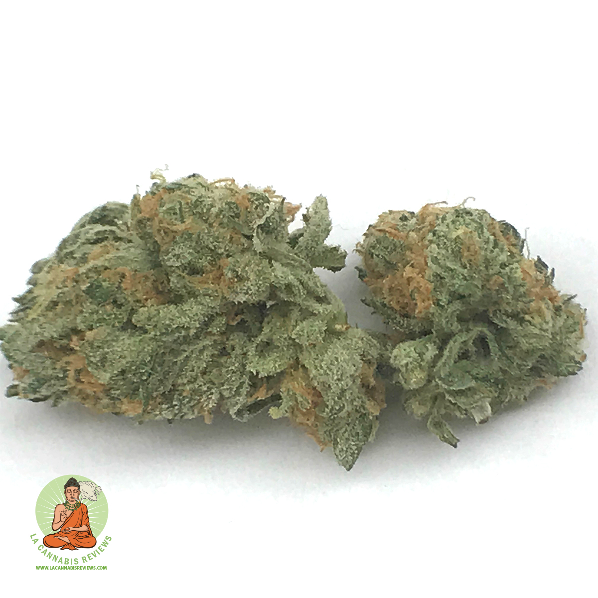 hollywood-holistic-green-crack-review