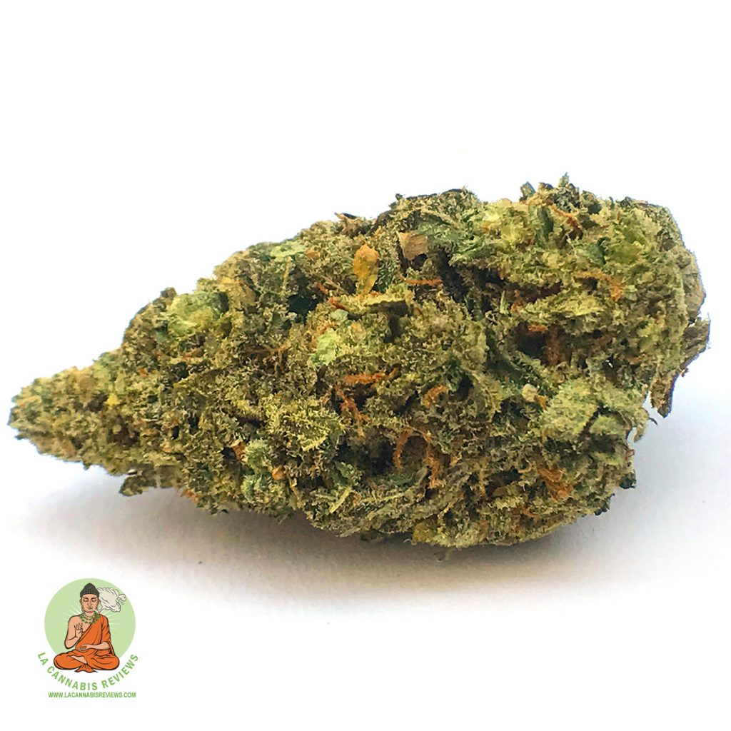 Happy Nugs Collective Jungle Fever Review November 2019 Happy Nugs Collective Dispensary