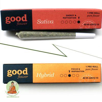 Hybrid Blend vs Sativa Blend