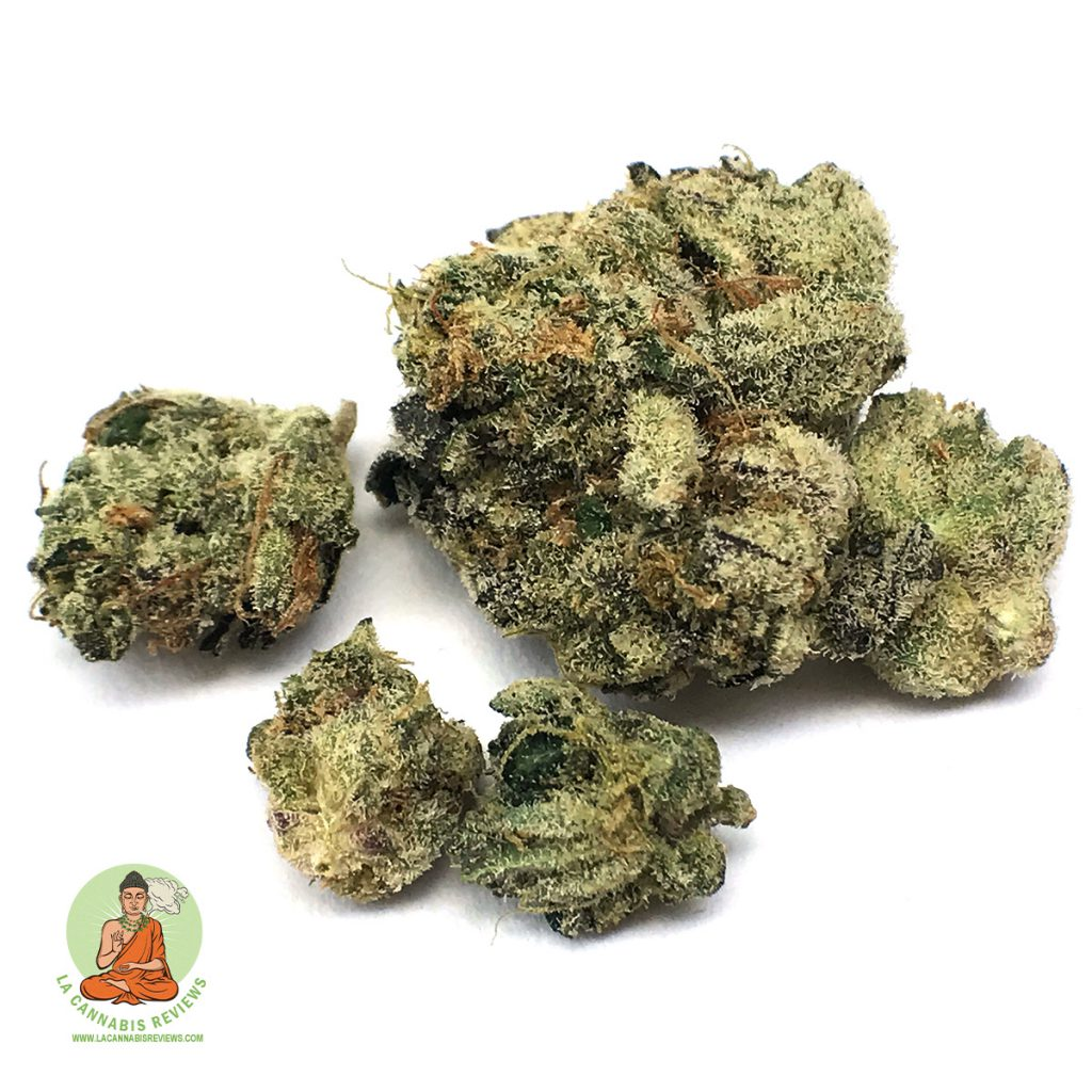 Herbarium Thin Mint Review November 2019 Herbarium Recreational Dispensary
