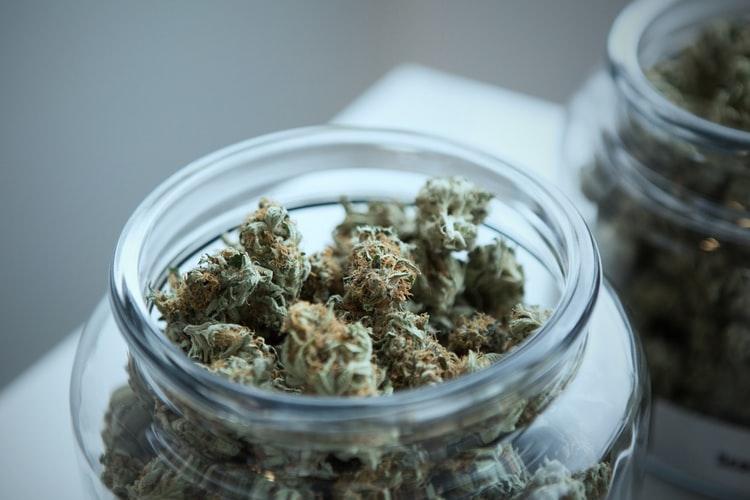 Legendary-Cannabis-Breeder-Subcool-Has-Died