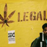 Smoke Signals: Legal Weed's Gold Rush Days May End in a Bust